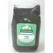 BOTANİKA - Kahverengi Hardal Tohumu (1)